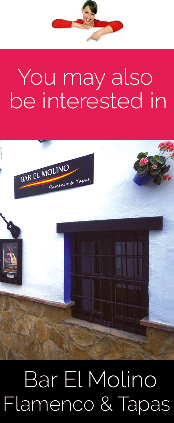 Flamenco and Tapas. Bar el Molino (Nerja)