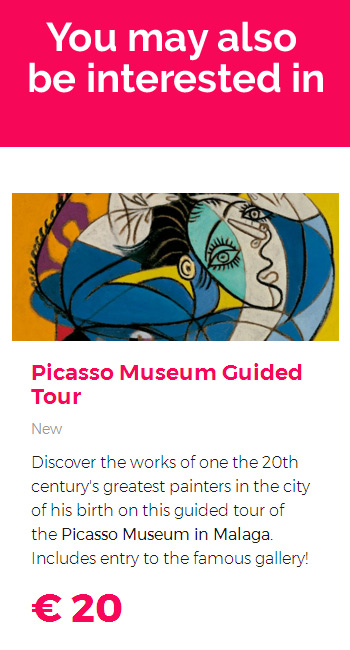 Picasso Museum Guided Tour